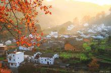 国内这10个村落的深秋美翻了!11月请假也一定要去!否则对不起秋天!