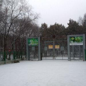 东北虎园旅游景点攻略图