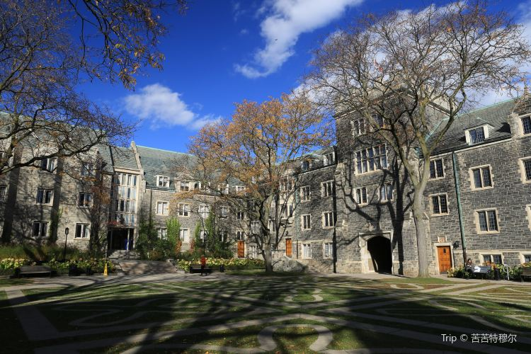 University of Toronto3