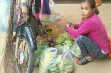 柬埔寨原生态水果 在柬埔寨街头,旅游区,随时可见流动的摊贩,卖水果的比较多,还有卖法式面包的。柬埔寨