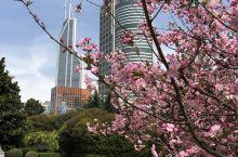 春日里阳光下的人民广场