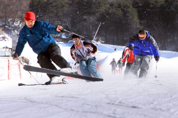 다밍산 완쏭링 스키장(대명산 만송령 스키장)1