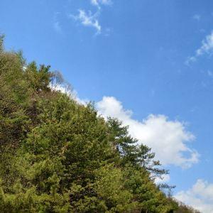 黄柏塬旅游景点攻略图