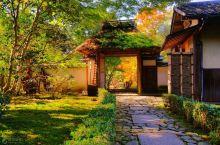 日本5大赏枫地