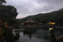 普陀山,普济寺
