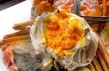 你吃的真的是阳澄湖大闸蟹吗?