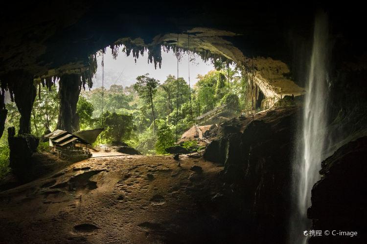 Niah National Park1