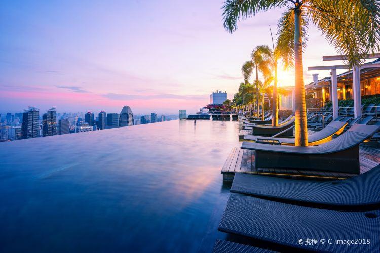 Marina Bay Sands Hotel Infinity Pool3