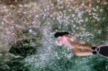 海底是个水晶宫,人鱼姐姐就住在里面......