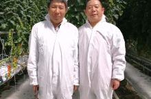 德州凯盛浩丰智慧农业产业园@南通赵宏明摄影