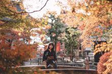 京都赏枫攻略🍁必打卡的赏枫之地