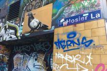 墨尔本市区的经典艺术非涂鸦莫属