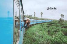 火车控打卡!!斯里兰卡的高山茶园小火车