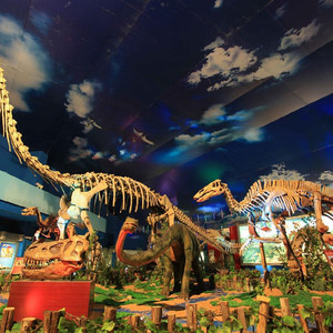 """诸城游记图文-中国最具特色魅力的""""恐龙之旅"""""""