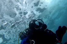如果你能在贝加尔湖冰潜,你就打败了99.99%的中国人