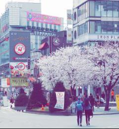 [首尔游记图片] 教你如何玩转韩国首尔