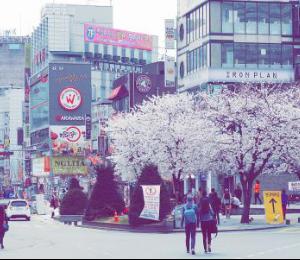 仁川游记图文-教你如何玩转韩国首尔