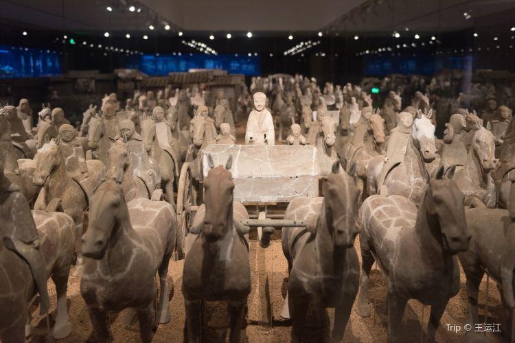 Qi Culture Museum