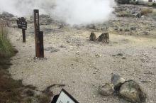 地狱温泉的水还是沸腾的。顺着山往上走,俯瞰整个云仙地区的景色也是很不错的。我走的快,差不多40-50
