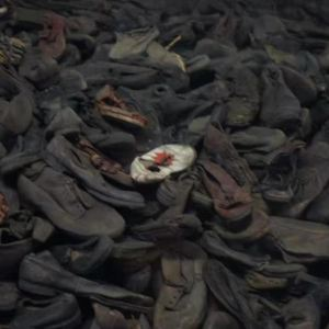 奥斯维辛集中营旅游景点攻略图