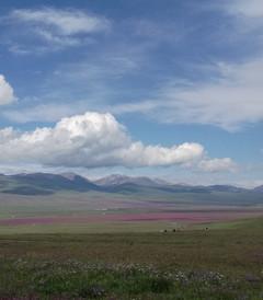 [新疆游记图片] 渐入佳境的北疆行