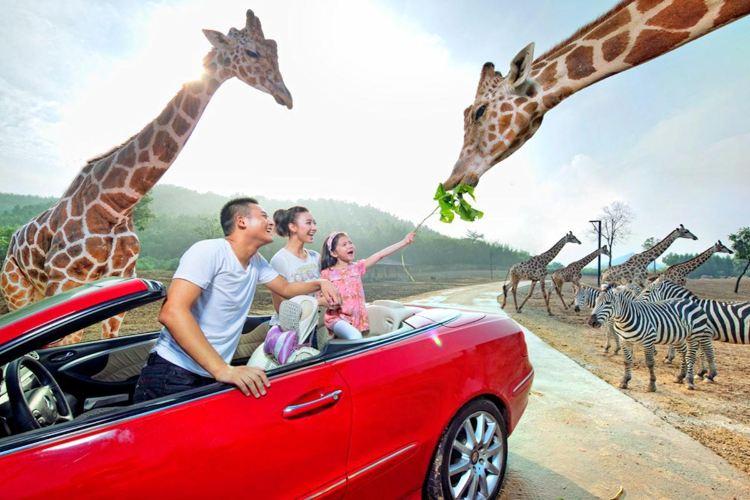 항저우 야생동물원(항주 야생동물세계)1