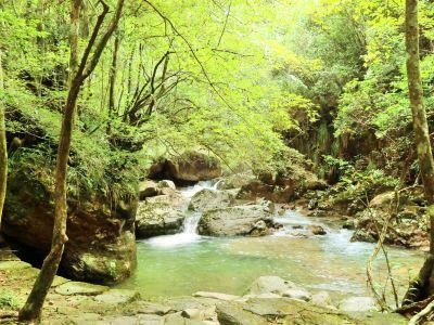 Thousand Buddha Mountain Scenic Area