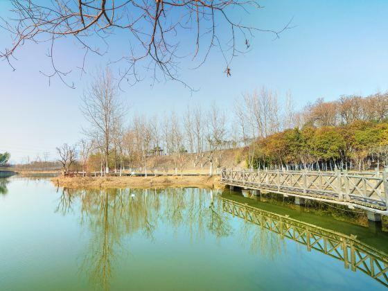 古淮河文化生態景區