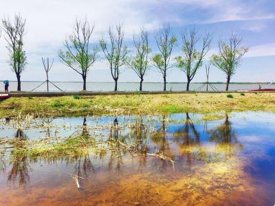Wolong Lake