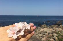 初岛,面朝大海春暖花开