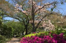 享受这明媚的春光