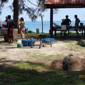 迪加岛国家公园旅游景点攻略图