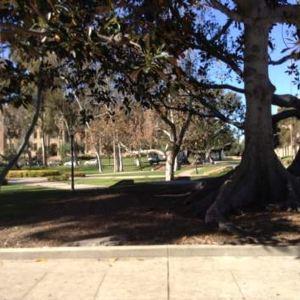 加利福尼亚大学洛杉矶分校旅游景点攻略图