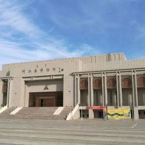 阿拉善博物馆旅游景点攻略图