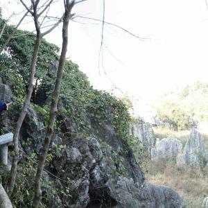 怪石林旅游景点攻略图