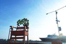 清晨的港口,飞鸟在天空盘旋,轮船也即将启航