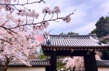 京都的山门