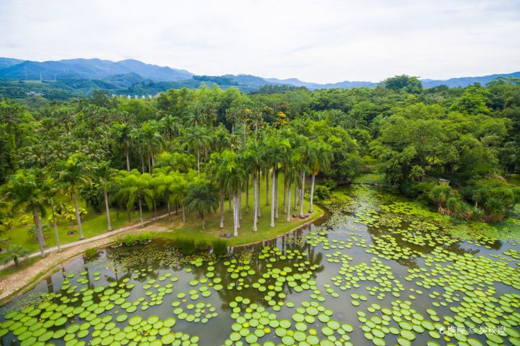 Xishuangbanna Tropical Botanical Garden, Chinese Academy of Sciences4
