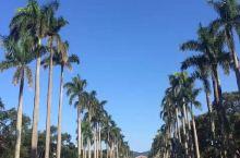 #寻找最美校园# 国立台北大学