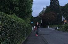 到瑞士湖边进行晨跑一直是我们的愿望,今天终于可以实现了。  昨天晚上设置好闹钟,起了个大早,沿着卢塞