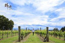 锋味新西兰 | 一份来自《锋味》的新西兰独家攻略,带你探索纯净新西兰