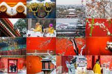 [苍茫紫禁城]海量美图一睹京城古都雪景