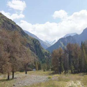 天池森林公园旅游景点攻略图