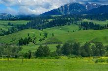那拉提草原:牛羊成群,风景如画!