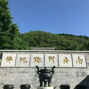 延寿寺旅游景点攻略图