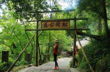 拜水都江堰,问道青城山 来到成都的第四天,终于等到了一个好天气。    7月30日这天,起了个大早。