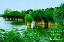 瓜州美景葫芦河