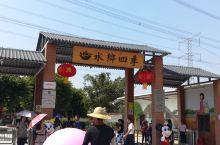 中山水乡四季旅游