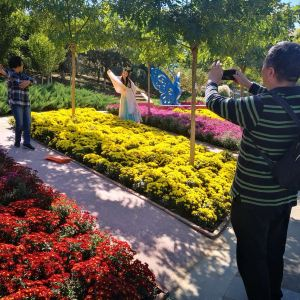 世界花卉大观园旅游景点攻略图
