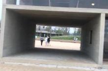 阿那亚图书馆